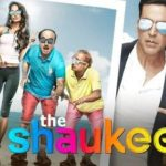 The Shaukeens Review, Story and Verdict -2014 Film