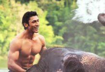 junglee animal lover film based on elephant tusk poaching